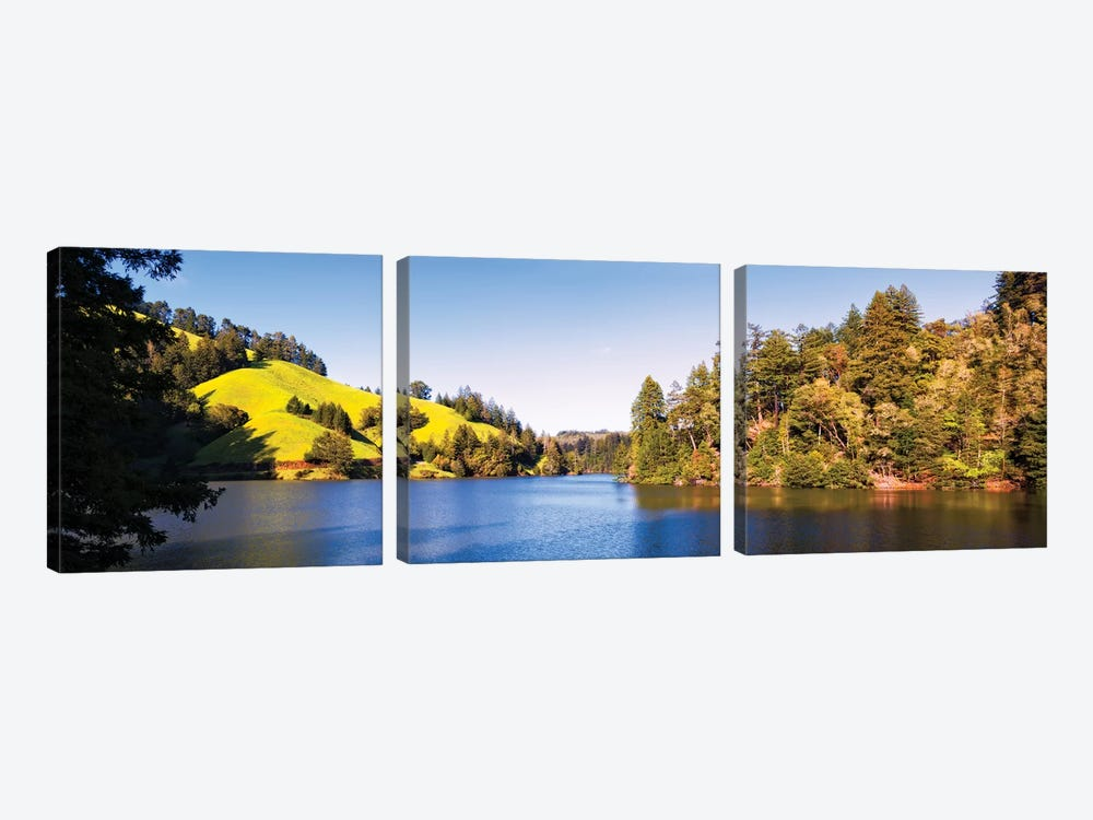 Trees At Lakeshore, Lake Lagunitas, Marin County, California, USA 3-piece Canvas Print