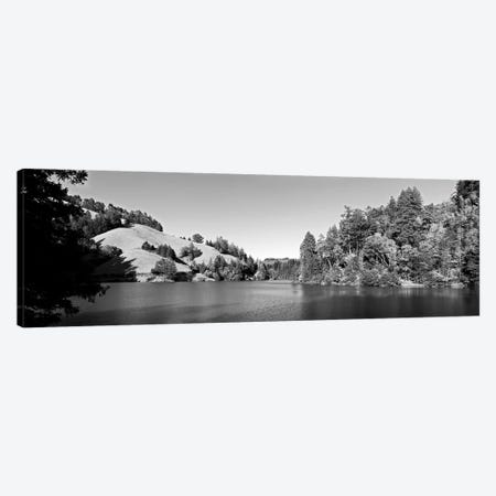 Trees At Lakeshore, Lake Lagunitas, Marin County, California, USA (Black And White) Canvas Print #PIM14971} by Panoramic Images Canvas Print