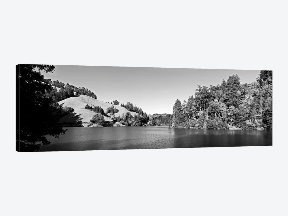 Trees At Lakeshore, Lake Lagunitas, Marin County, California, USA (Black And White) by Panoramic Images 1-piece Canvas Wall Art
