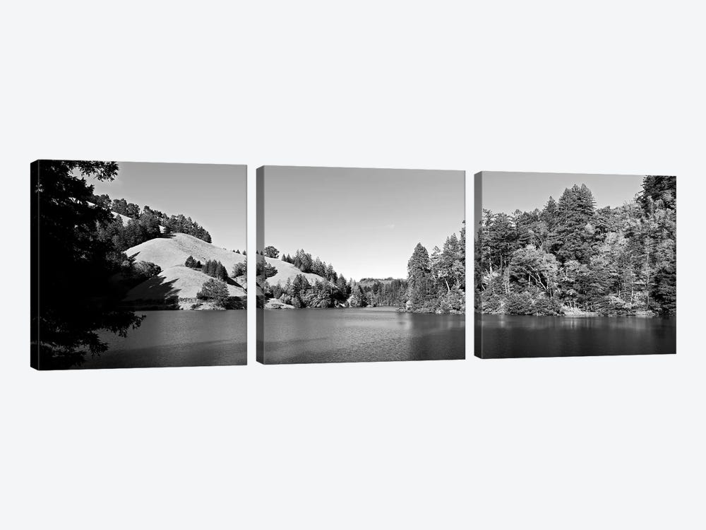 Trees At Lakeshore, Lake Lagunitas, Marin County, California, USA (Black And White) by Panoramic Images 3-piece Canvas Wall Art