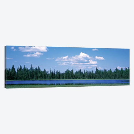Trees At The Lakeside, Alaska, USA Canvas Print #PIM14972} by Panoramic Images Canvas Art Print
