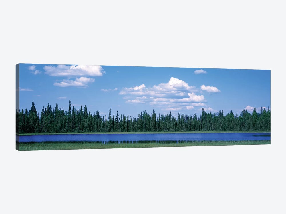 Trees At The Lakeside, Alaska, USA by Panoramic Images 1-piece Canvas Print