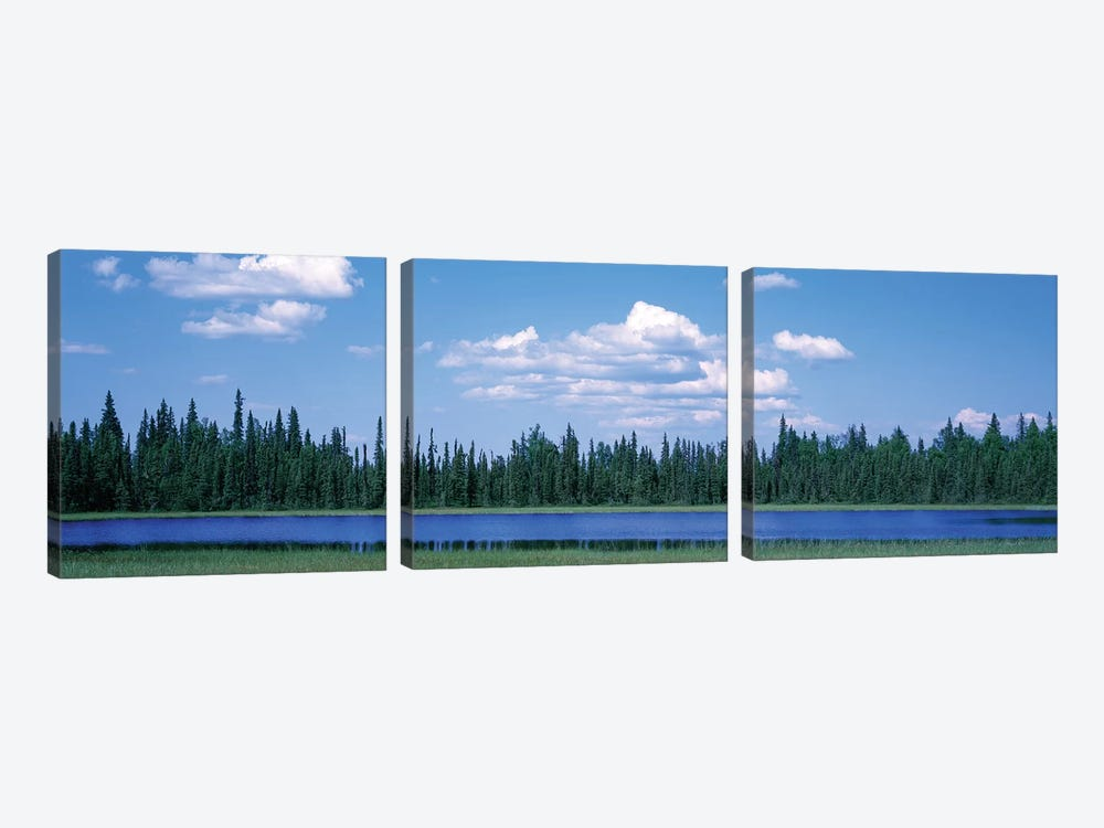 Trees At The Lakeside, Alaska, USA by Panoramic Images 3-piece Canvas Art Print