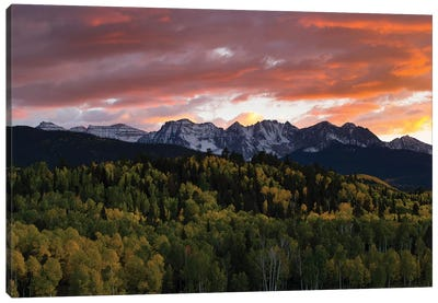 Trees With Mountain Range In The Background At Dusk, Aspen, Pitkin County, Colorado, USA I Canvas Art Print