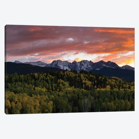 Trees With Mountain Range In The Background At Dusk, Aspen, Pitkin County, Colorado, USA I Canvas Print #PIM14977} by Panoramic Images Canvas Artwork