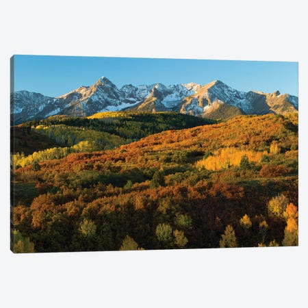 Trees With Mountain Range In The Background At Dusk, Aspen, Pitkin County, Colorado, USA II Canvas Print #PIM14978} by Panoramic Images Canvas Print
