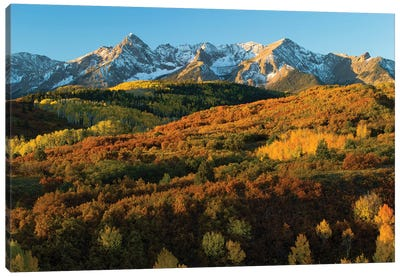 Trees With Mountain Range In The Background At Dusk, Aspen, Pitkin County, Colorado, USA II Canvas Art Print