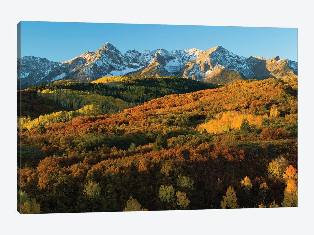 Trees With Mountain Range In The Background At Dusk, Aspen, Pitkin County, Colorado, USA II by Panoramic Images 1-piece Art Print