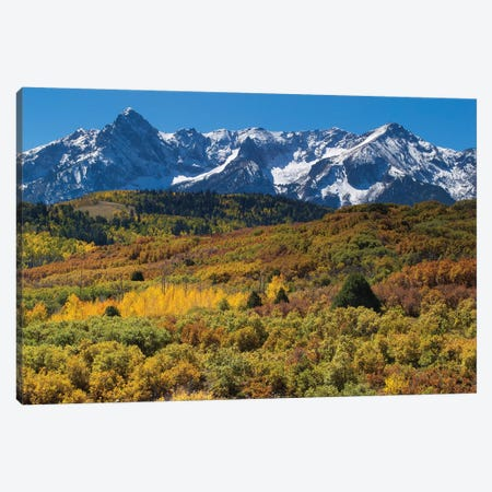 Trees With Mountain Range In The Background, Aspen, Pitkin County, Colorado, USA I Canvas Print #PIM14979} by Panoramic Images Canvas Art Print