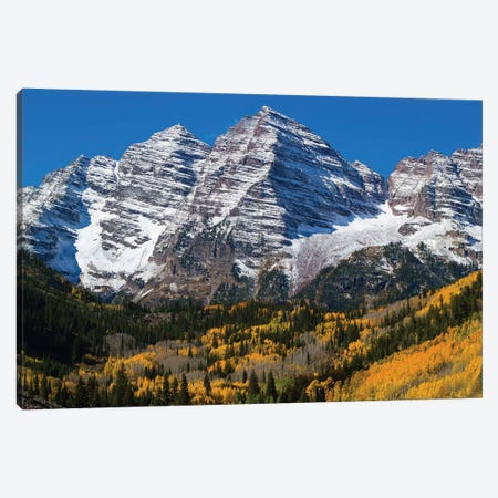 Trees With Mountain Range In The Background, Maroon Bells, Maroon Creek Valley, Aspen, Colorado, USA Canvas Print #PIM14982} by Panoramic Images Canvas Wall Art