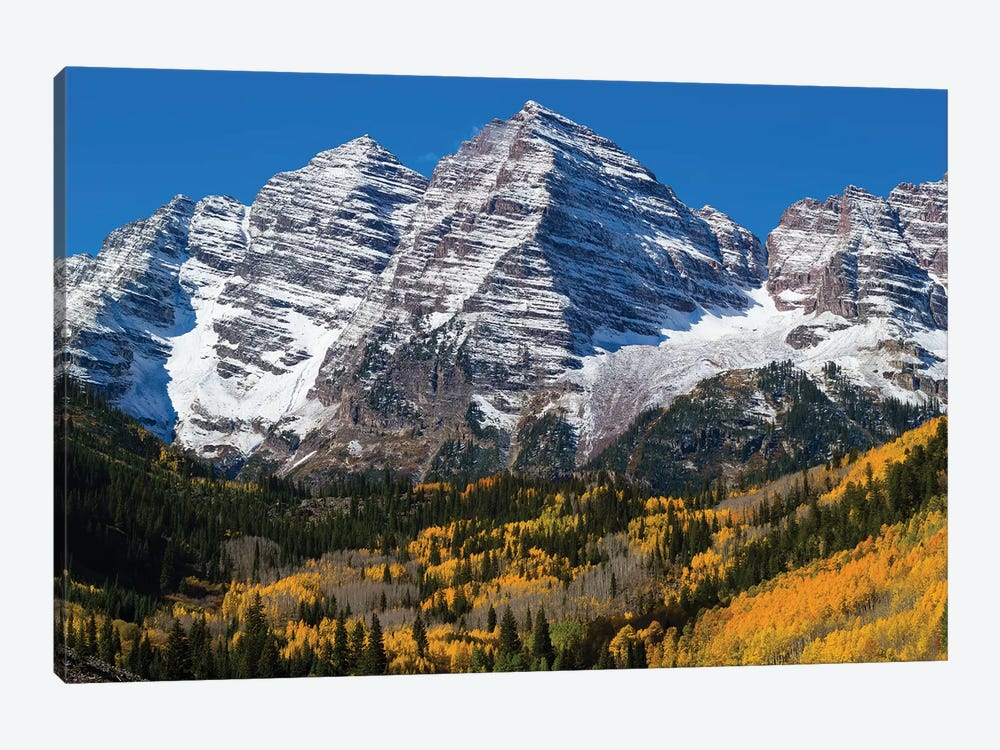 Trees With Mountain Range In The Background, Maroon Bells, Maroon Creek Valley, Aspen, Colorado, USA by Panoramic Images 1-piece Canvas Art