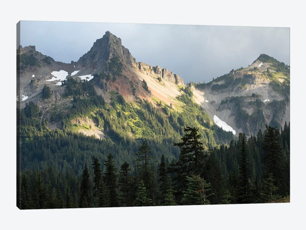Trees With Mountain Range In The Background, Mount Rainier National Park, Washington State, USA by Panoramic Images 1-piece Canvas Print