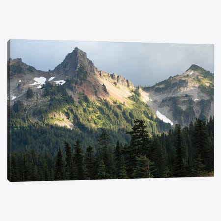 Trees With Mountain Range In The Background, Mount Rainier National Park, Washington State, USA Canvas Print #PIM14983} by Panoramic Images Canvas Wall Art