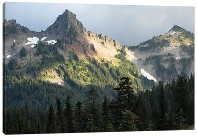 Trees With Mountain Range In The Background, Mount Rainier National Park, Washington State, USA Canvas Art Print