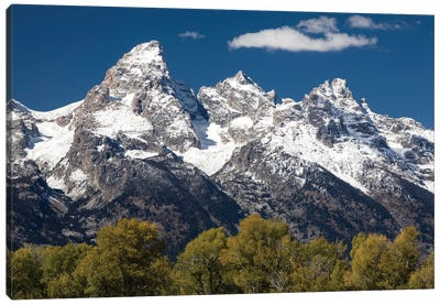 Trees With Mountain Range In The Background, Teton Range, Grand Teton National Park, Wyoming, USA I Canvas Art Print