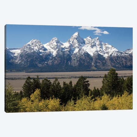 Trees With Mountain Range In The Background, Teton Range, Grand Teton National Park, Wyoming, USA II Canvas Print #PIM14986} by Panoramic Images Art Print
