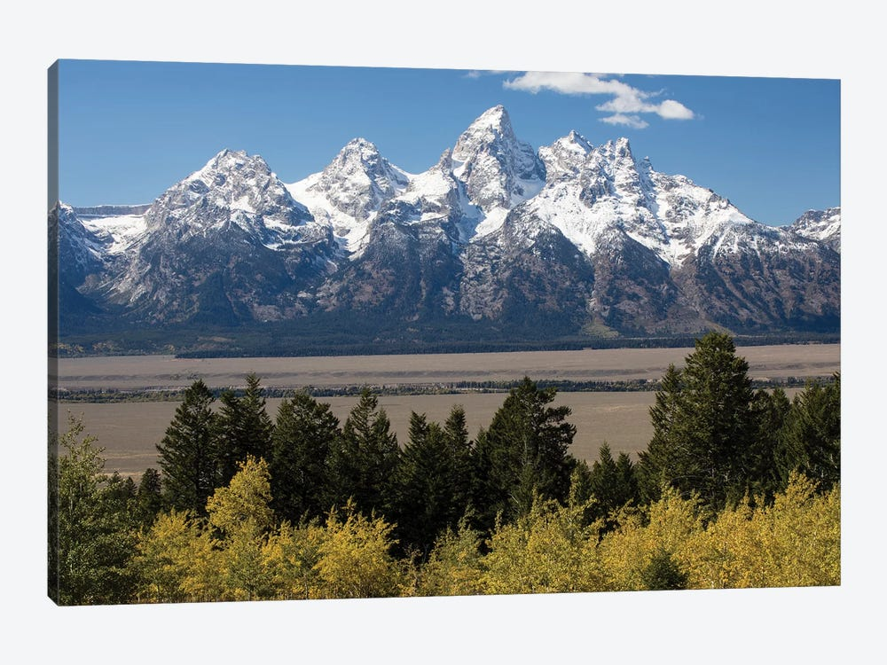 Trees With Mountain Range In The Background, Teton Range, Grand Teton National Park, Wyoming, USA II by Panoramic Images 1-piece Canvas Wall Art