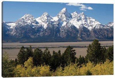 Trees With Mountain Range In The Background, Teton Range, Grand Teton National Park, Wyoming, USA II Canvas Art Print