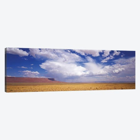 Vermilion Cliffs, Arizona, USA Canvas Print #PIM14991} by Panoramic Images Canvas Art Print