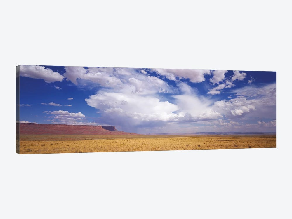 Vermilion Cliffs, Arizona, USA by Panoramic Images 1-piece Canvas Wall Art