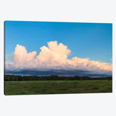 View Of Clouds In The Sky, Florida, USA Canvas Print #PIM14993} by Panoramic Images Canvas Art Print