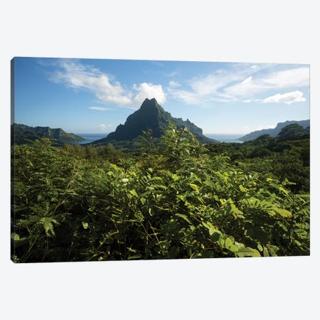 View Of Mountain Peaks, Moorea, Tahiti, French Polynesia II Canvas Print #PIM15002} by Panoramic Images Canvas Wall Art