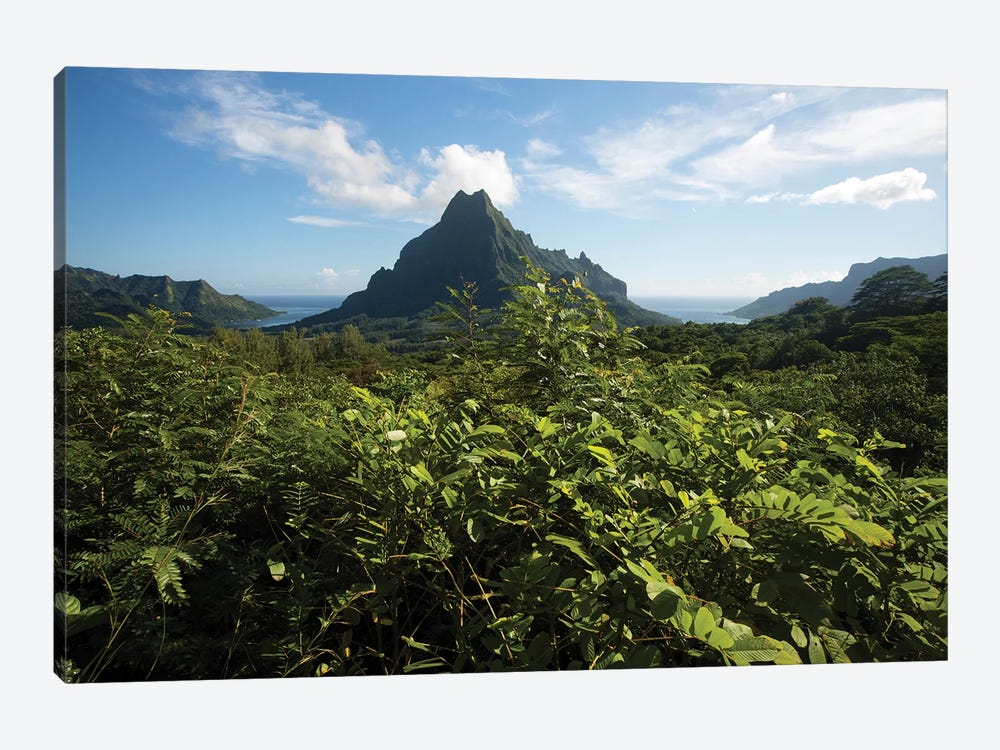 View Of Mountain Peaks, Moorea, Tahiti, French Polynesia II by Panoramic Images 1-piece Canvas Artwork