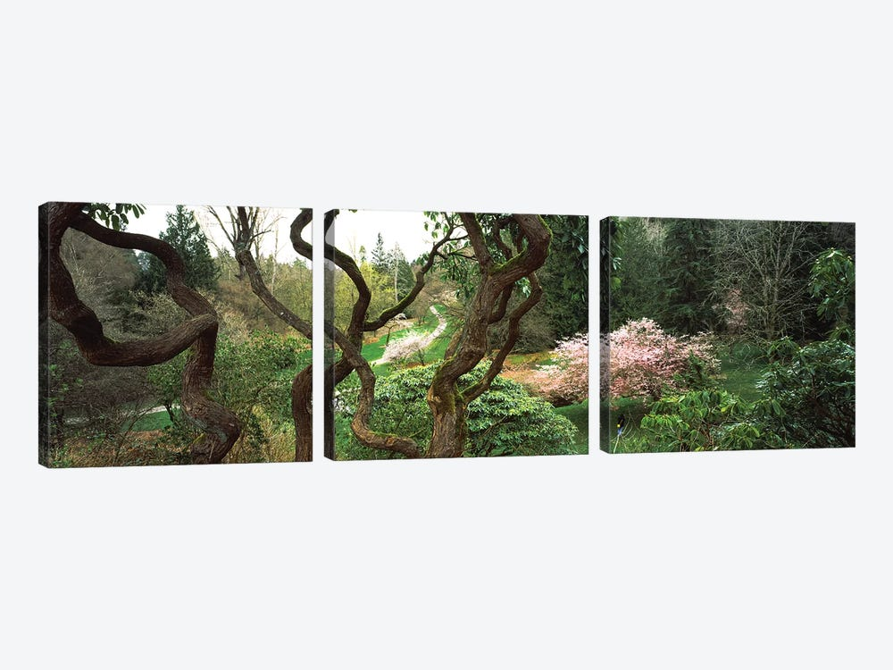 Washington Park, Seattle, Washington State, USA I by Panoramic Images 3-piece Canvas Wall Art