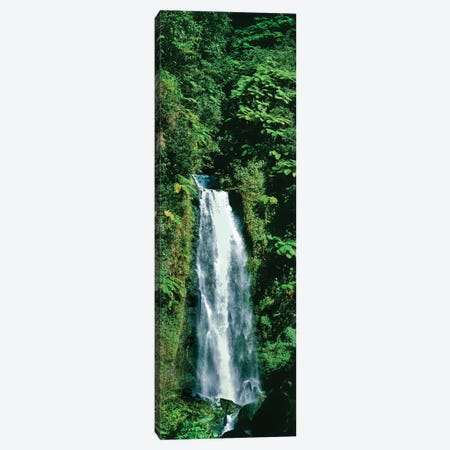 Waterfall In A Forest, Mother Falls, Trafalgar Falls, Dominica, Caribbean Canvas Print #PIM15021} by Panoramic Images Canvas Wall Art