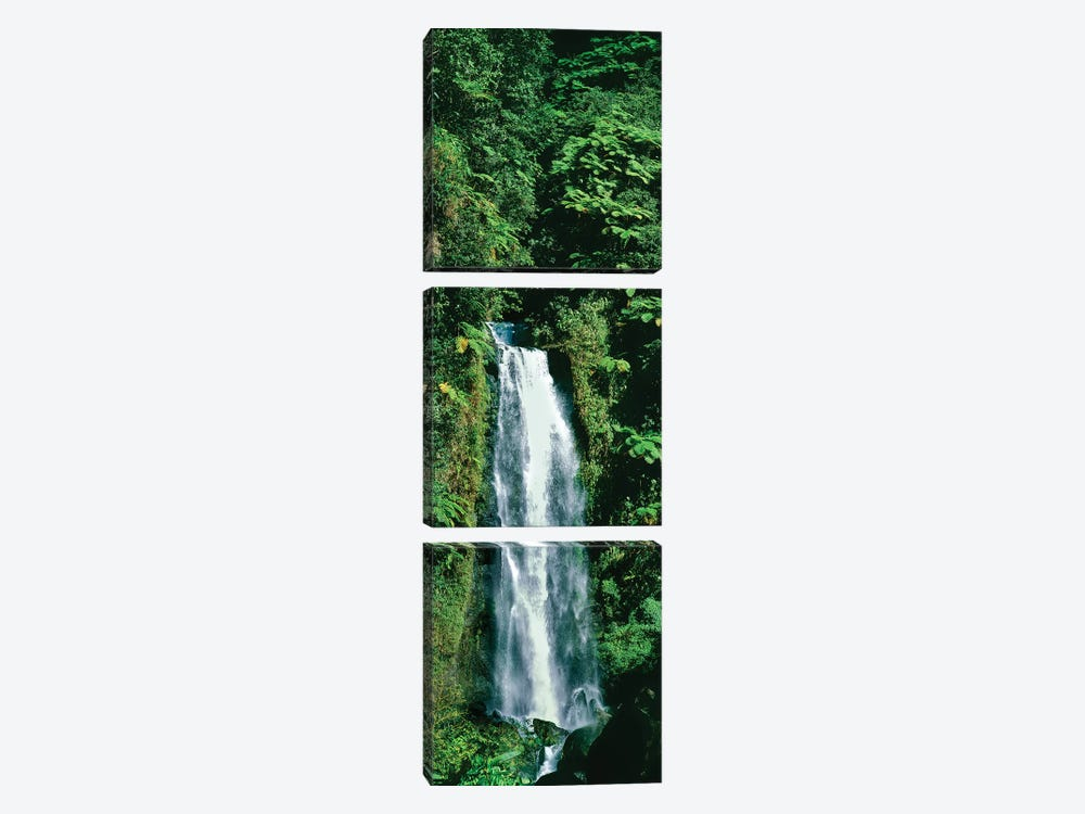 Waterfall In A Forest, Mother Falls, Trafalgar Falls, Dominica, Caribbean by Panoramic Images 3-piece Canvas Print