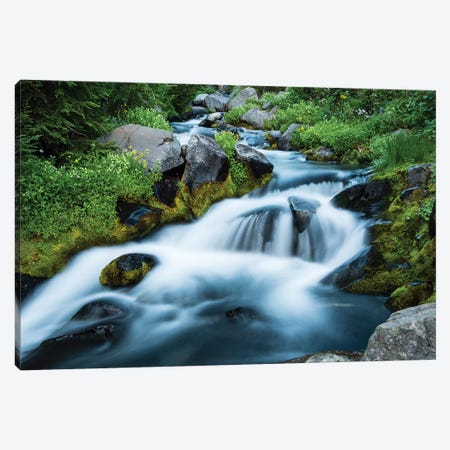 Waterfall In A Forest, Mount Rainier National Park, Washington State, USA 3-Piece Canvas #PIM15022} by Panoramic Images Canvas Wall Art