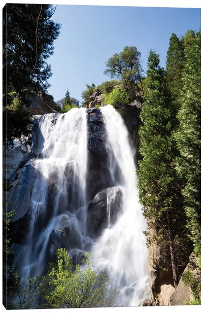 Waterfall In A Forest, Sequoia National Park, California, USA Canvas Art Print