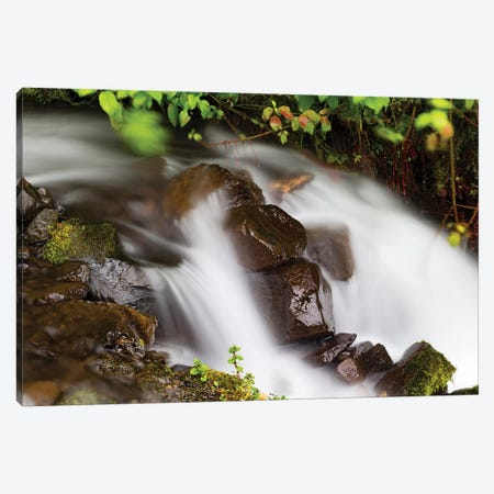 Waterfall In A Forest, Wahkeena Falls, Hood River, Oregon, USA I Canvas Print #PIM15024} by Panoramic Images Art Print