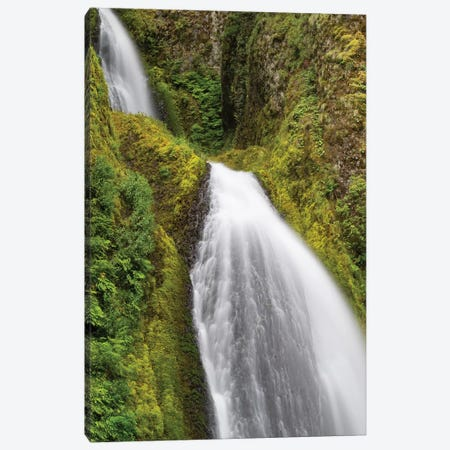 Waterfall In A Forest, Wahkeena Falls, Hood River, Oregon, USA II Canvas Print #PIM15025} by Panoramic Images Canvas Art Print
