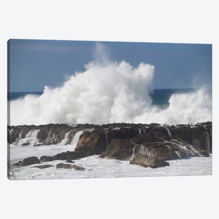 Waves Breaking On The Coast, Hawaii, USA Canvas Print #PIM15030} by Panoramic Images Canvas Art Print
