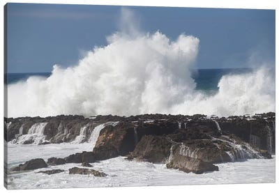 Waves Breaking On The Coast, Hawaii, USA Canvas Art Print