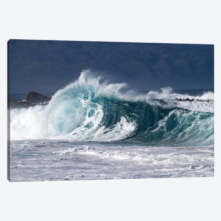 Waves In Pacific Ocean, Hawaii, USA Canvas Print #PIM15033} by Panoramic Images Canvas Print