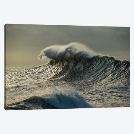 Waves In The Pacific Ocean At Dusk, San Pedro, Los Angeles, California, USA III Canvas Print #PIM15037} by Panoramic Images Canvas Artwork