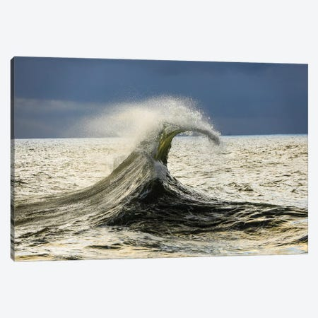 Waves In The Pacific Ocean, San Pedro, Los Angeles, California, USA VI Canvas Print #PIM15056} by Panoramic Images Canvas Wall Art