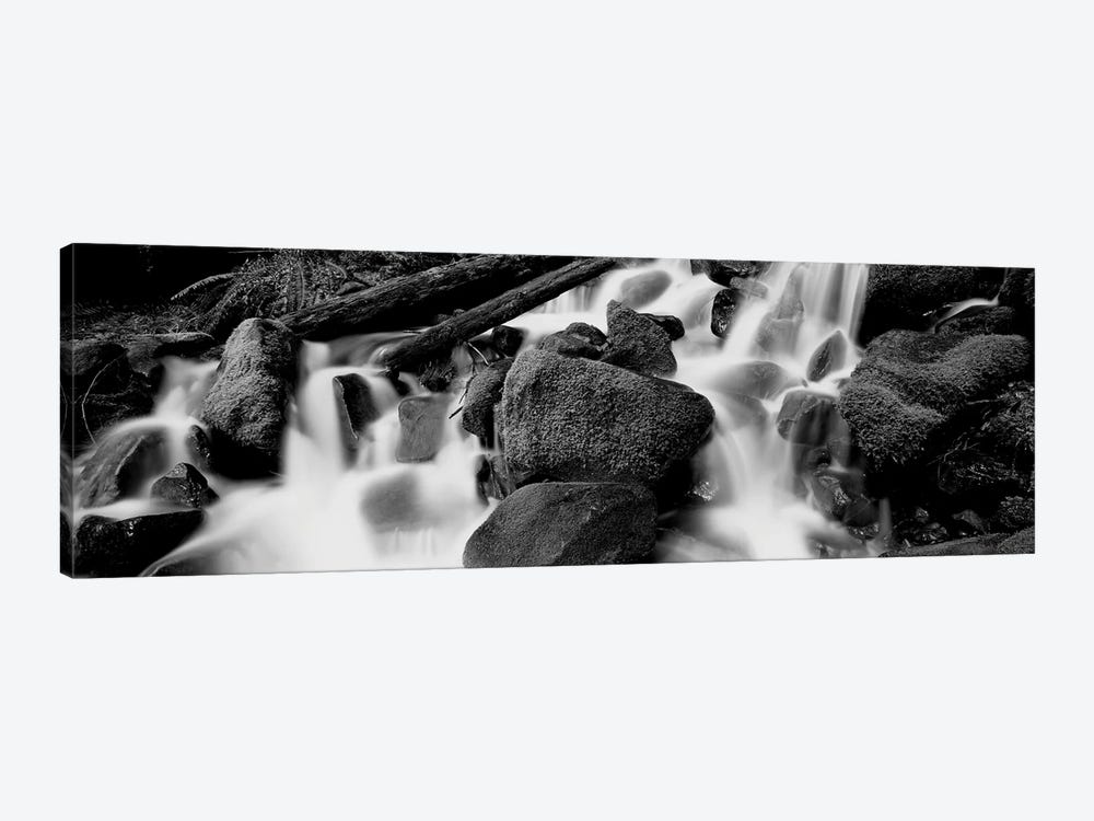 Cascading Waterfall In A Rainforest, Olympic National Park, Washington State, USA by Panoramic Images 1-piece Canvas Art