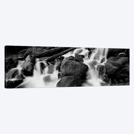 Cascading Waterfall In A Rainforest, Olympic National Park, Washington State, USA 3-Piece Canvas #PIM15107} by Panoramic Images Canvas Wall Art