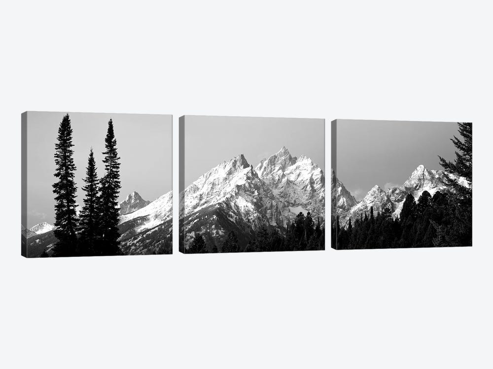 Cathedral Group Grand Teton National Park WY by Panoramic Images 3-piece Canvas Art Print