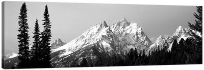 Cathedral Group Grand Teton National Park WY Canvas Art Print