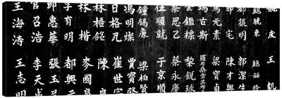 Close-Up Of Chinese Ideograms, Beijing, China Canvas Art Print
