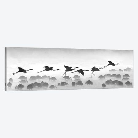 Flamingos Landing, Kenya 3-Piece Canvas #PIM15130} by Panoramic Images Canvas Artwork
