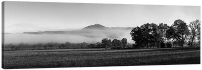Fog Over Mountain, Cades Cove, Great Smoky Mountains National Park, Tennessee, USA Canvas Art Print