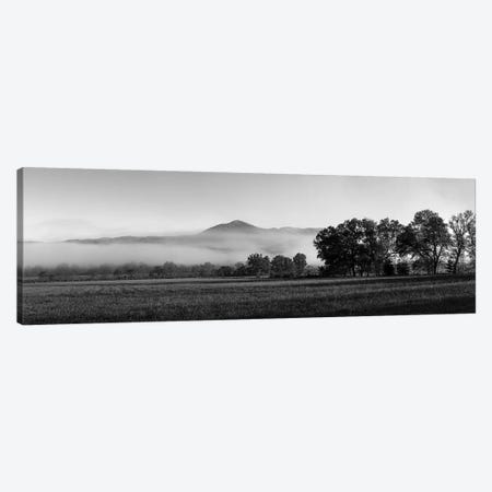 Fog Over Mountain, Cades Cove, Great Smoky Mountains National Park, Tennessee, USA 3-Piece Canvas #PIM15131} by Panoramic Images Canvas Art