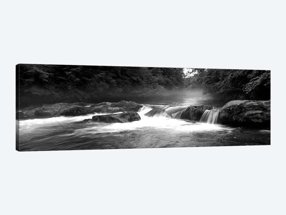 Great Smoky Mountains National Park, Little Pigeon River, River Flowing Through A Forest by Panoramic Images 1-piece Canvas Art Print