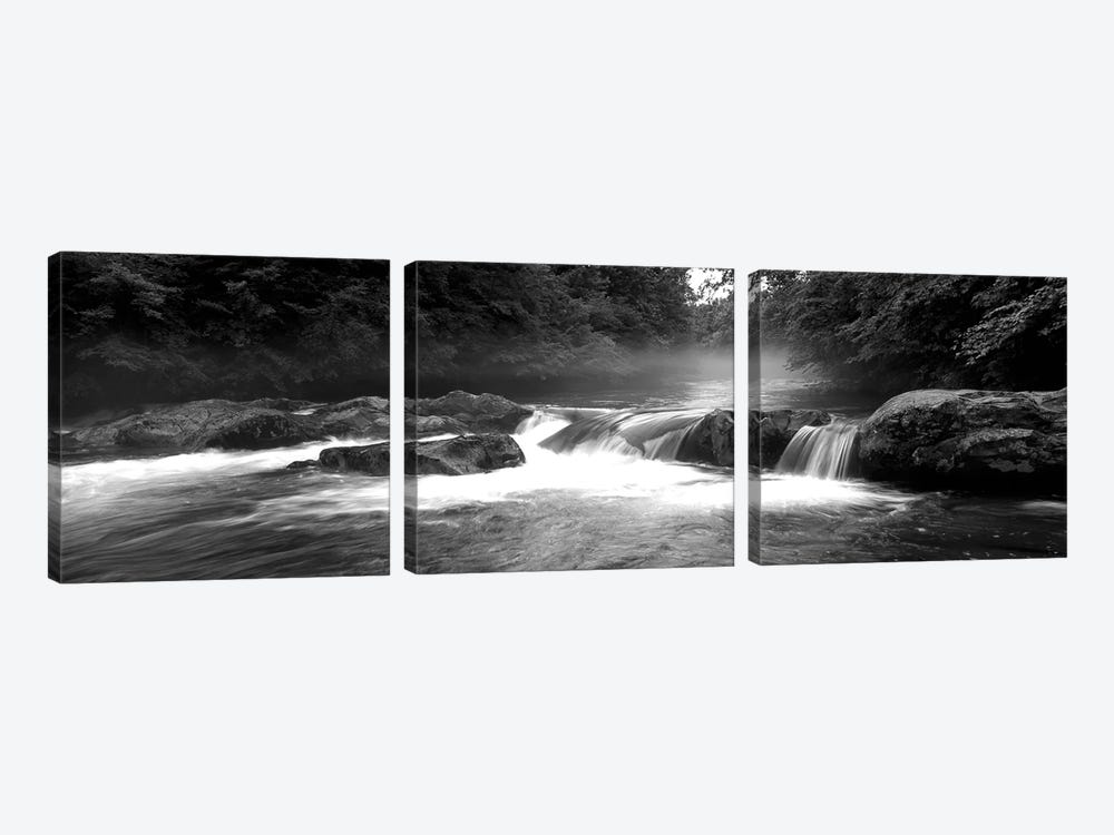 Great Smoky Mountains National Park, Little Pigeon River, River Flowing Through A Forest by Panoramic Images 3-piece Canvas Art Print