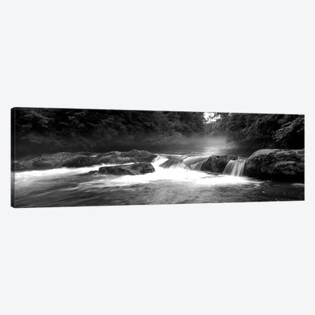 Great Smoky Mountains National Park, Little Pigeon River, River Flowing Through A Forest Canvas Print #PIM15140} by Panoramic Images Art Print